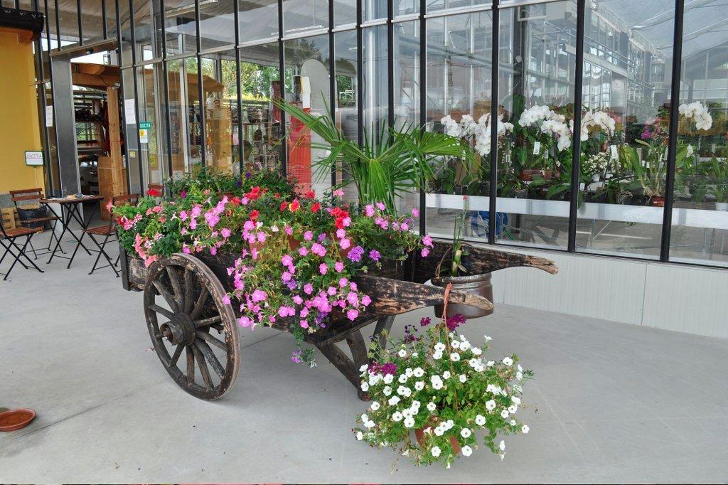 Carro di fiori