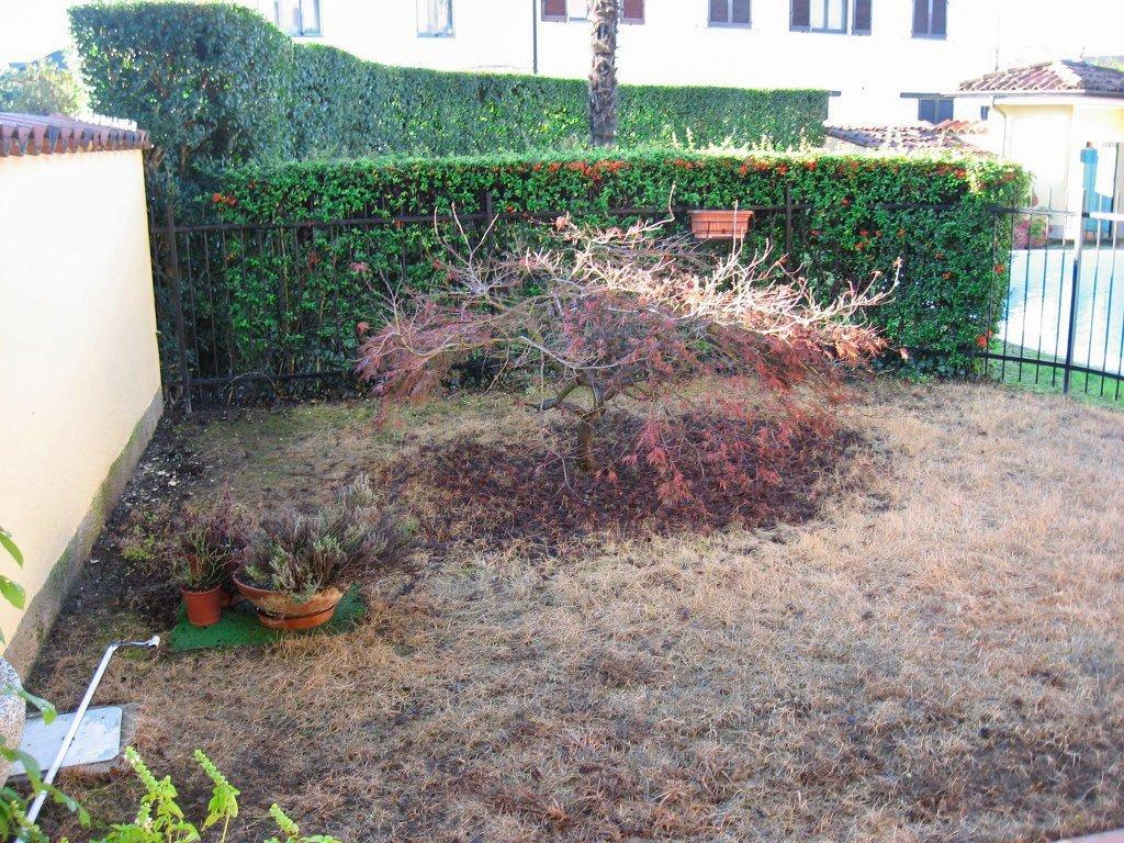 Ristrutturazione giardini