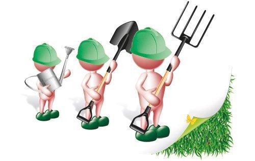 Caruso Giardinaggio: Gestione Del Verde